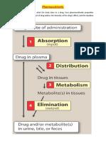 Pharmacokinetics - administration.doc