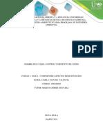 Fase 1 - Identificar fuentes ruido e impactos.docx
