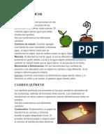 CAMBIOS FÍSICOS.docx