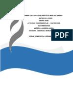 ACTIVIDAD DE APRENDIZAJE …1 MATRICES & DETERMINANTES.docx
