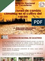 Afectaciones de cambio climatico en el cultivo del cacao(1).pdf
