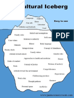 The Cultural Iceberge