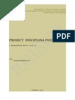 Model_proiect_POO.doc