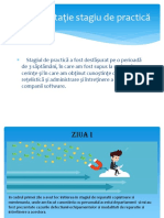 Documentație stagiu de practică.pptx