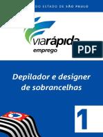 Depilador e Designer de Sobrancelhas 1.pdf