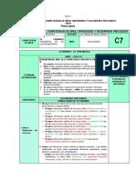0. MATRIZ DE COCADEES IEMMV 2019.docx