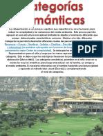 CATEGORIA ANIMALES  CON NOMBRE (2).ppt