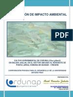 DIA_COMPLETA_CORVINA.pdf