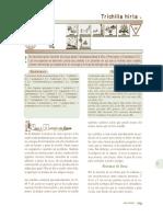 trichilia_americana.pdf