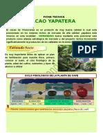 FICHA TECNICA Fertilización CAFE.doc
