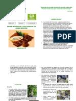 Manual Bpa Cacao4