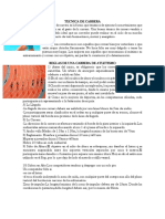 TECNICA DE CARRERA.docx