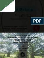 Laporan Magang Kelapa Sawit Arie Soeseno