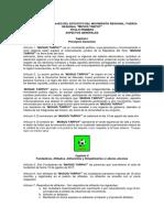 Bases de La Convocatoria CAS 002-2019 UGEL-HVCA