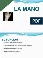 Clase 2 - Mano y Lesiones Mas Frecuentes