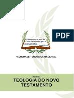 1 - TEOLOGIA DO NOVO TESTAMENTO.pdf
