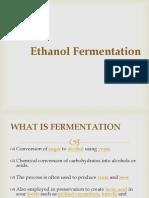 Ethanol Production.pdf