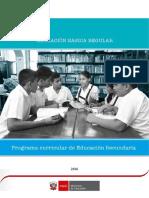 programa-curricular-educacion-secundaria WORD.docx
