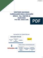 7964 - 1 Diretrizes Curriculares Nacionais para Educação Básica- Art 1º ao 9º - Aula 01.pdf