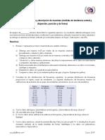 Manual de Practicas de Lab de Pavimentos
