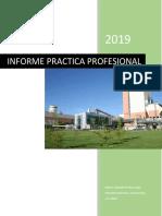 Informe Practica Profesional.pdf