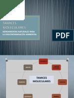 tamicesmoleculares-170703132205.pdf