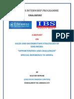 Final Report Kalyani