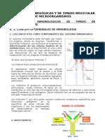 11.+inmunogentética