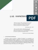 08CAPI07AMNESIAS.pdf