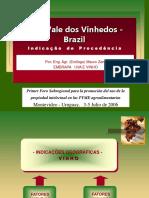 Case_vale_dos_vinhedos.ppt
