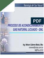 TECGI_305_Gas Natural Licuado GNL.pdf
