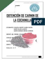 EXTRACCION DEL CARMIN DE LA COHINILLA.docx