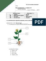 diagnostico ciencias naturales.docx
