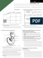 Fichas - Sistema Cardiovascular e Respiratório - Porto Editora- Com Soluções