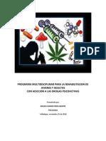 Programa Multidiciplinar
