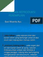 2. Organ Reproduksi Perempuan