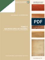 SD-20-Macroscopia-madera-MOGLIA.pdf