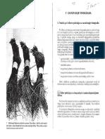 TEHNOLOGIJA UZGOJA VINOVE LOZE.pdf