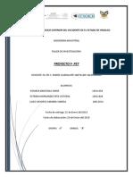 PROY-(F PET)-R4.docx