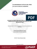 tesis shampoo quinua.pdf