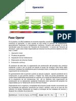9.Guia_GGPIC_-_Operacion