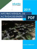 INFORME_FINAL_ENERO_2019.pdf