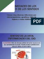 ANATOMIA TEMA FINAL enfermedadesrganosdelossentidos-110508025857-phpapp01.pdf