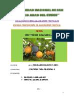 EL CULTIVO DE GRANADILLA.pdf