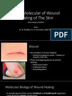 Basic Mollecular Wound Healing of the Skin