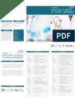 Programa Master en Gestion Clinica de Unidades Asistenciales 2o Edicion