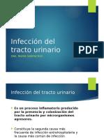 Infecciones Del Tracto Urinario. Dra.santacruz