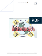 Int_cap1.pdf