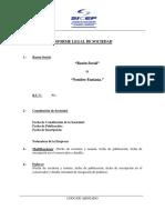 Informe_Juridico_Empresa (1).docx