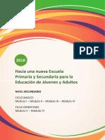 Lineamientos Curriculares Ciclo Basico-Ciclo OrientadoEPJA.pdf